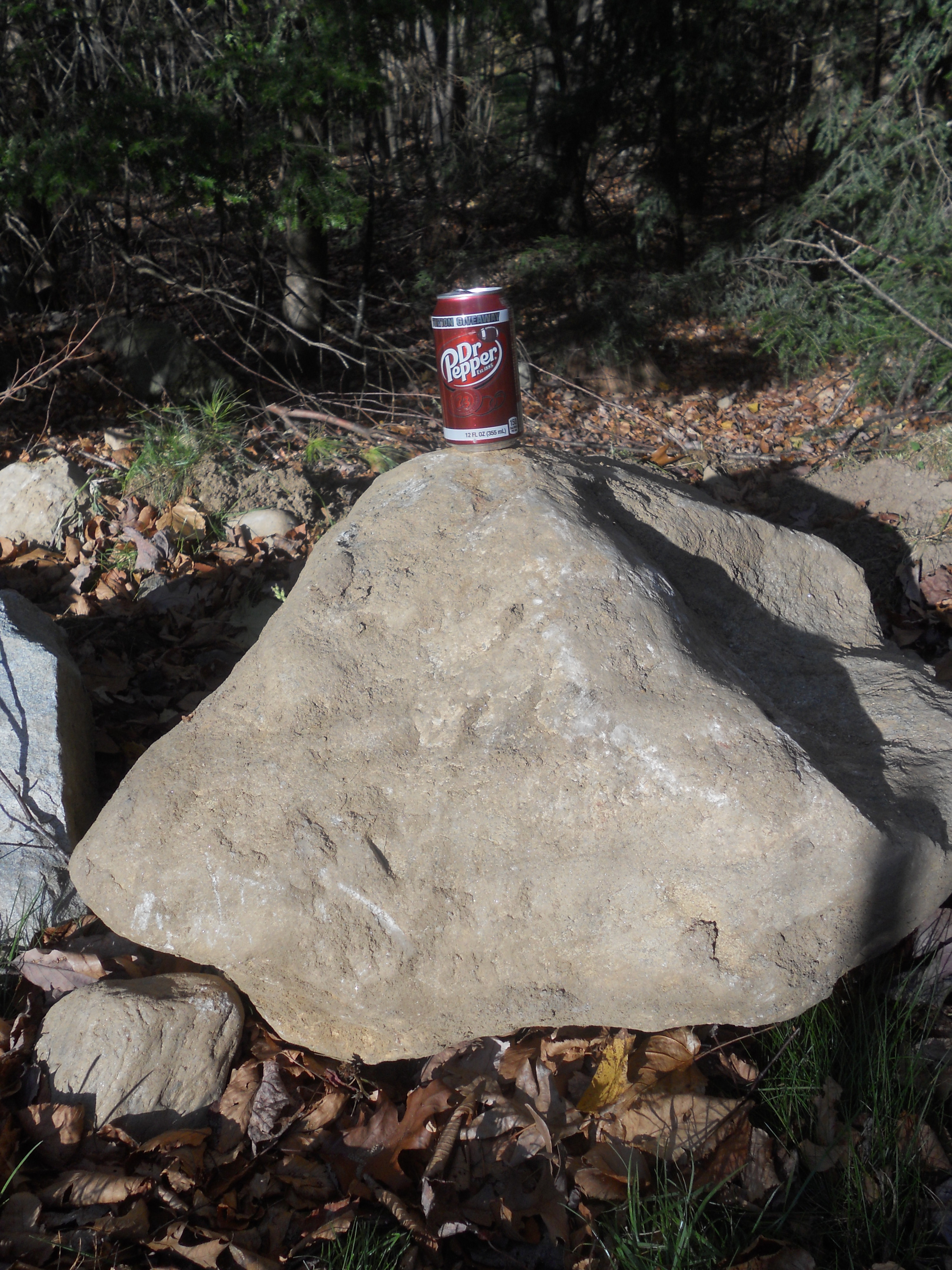 The biggest of the rocks that was unearthed during the sweet potato harvest. The Dr. Pepper can is there to give perspective on the massive size of the rock!